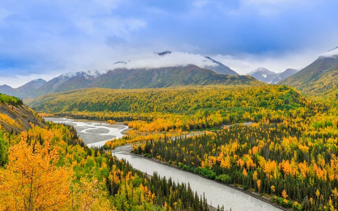 Into the Wild with a Family Trip to Alaska
